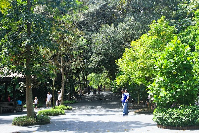 cara menuju Singapore Botanic Garden dengan MRT