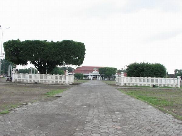 north alun alun yogyakarta