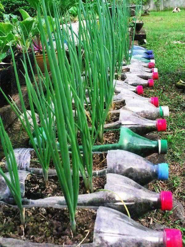 mengolah botol plastik bekas jadi pot