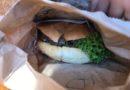 Fergburger, Kuliner Kenyang Mampus Yang Mesti Kalian Coba Kalo Liburan ke Queenstown New Zealand