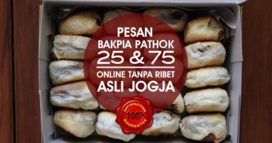 Jual Bakpia Pathok 25 dan 75 Online 100% Asli, LEBIH MURAH DARIPADA DI TOKO!!!